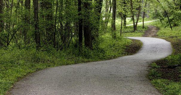 forest-path-e1469300580413